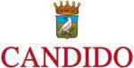 Candido Wines logo
